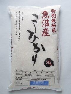 新潟県十日町産 魚沼コシヒカリ 特別栽培米