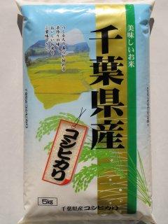 千葉県産 コシヒカリ