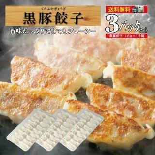 /黒豚餃子3パック/【送料無料】-黒豚餃子3-