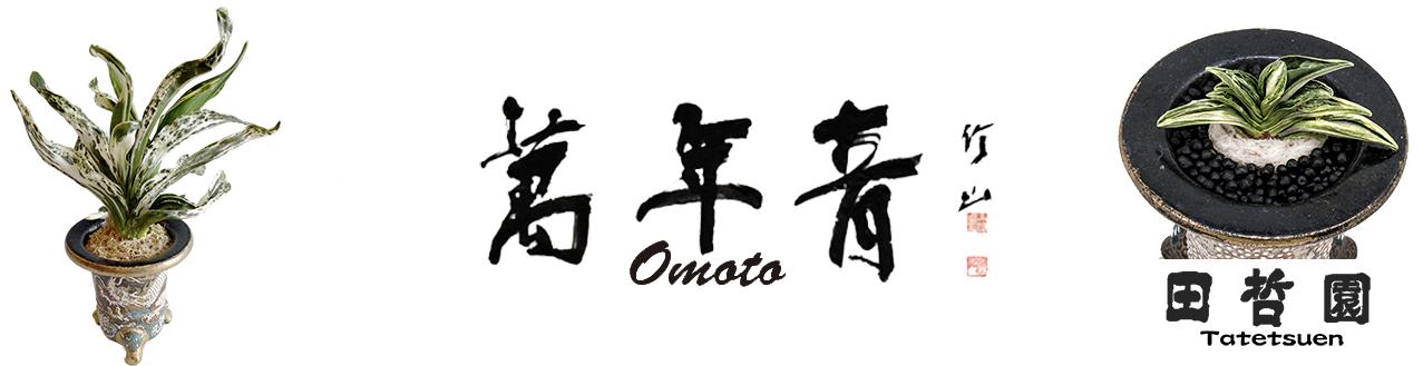 田哲園omotonet
