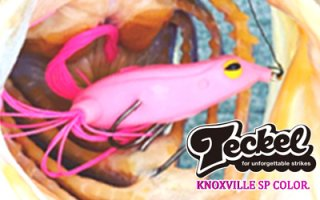 <img class='new_mark_img1' src='https://img.shop-pro.jp/img/new/icons25.gif' style='border:none;display:inline;margin:0px;padding:0px;width:auto;' />Teckel/KNOXVILLE SPCOLOR 「Bubblegum」