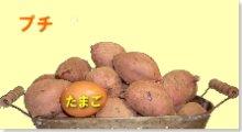 完熟安納芋(紅)プチ 5�