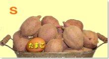 完熟安納芋(紅)S 5�