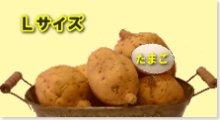 完熟安納芋(黄金)L 5kg箱