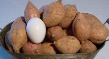 完熟安納芋(黄金)プチ 10kg
