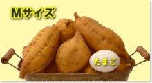 完熟安納芋(黄金)M 10kg