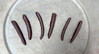 土佐文旦ピールチョコレート