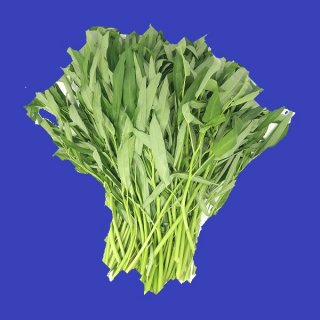 WATER SPINACH パップン(空心菜) 1kg