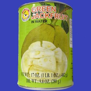 TAS YOUNG GREEN JACK FRUIT24X 482g CASE