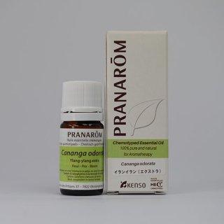 【プラナロム 精油】イランイラン(エクストラ)
