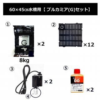 60cm×45cm水槽用ブルカミア(G)セット