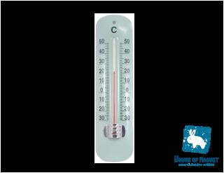 クラシックな温度計