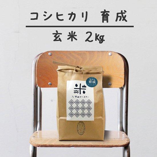 コシヒカリ「育成」<br>(減農薬&カルテック)<br>玄米 2キロ