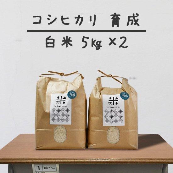コシヒカリ「育成」<br>(減農薬&カルテック米)<br>白米 5キロ×2個