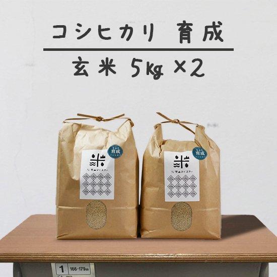 コシヒカリ「育成」<br>(減農薬&カルテック米)<br>玄米 5キロ×2個