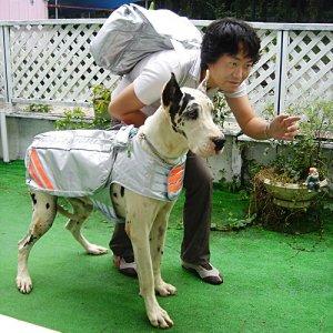 【わんちゃん】避難ジャケット