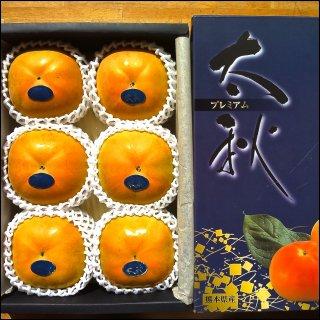 【10月限定商品】『プレミアム太秋柿 魁(さきがけ)』糖度18以上/特選2kg(5〜6個入) 化粧箱