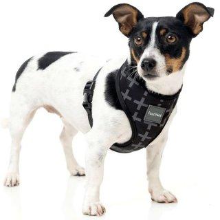 犬用首輪 ファッションハーネス(胴輪)Yeezy 【FuzzYard】