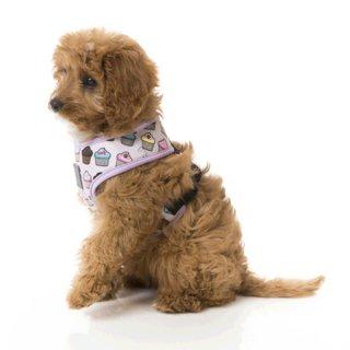犬用首輪 ファッションハーネス(胴輪)Fresh 【FuzzYard】