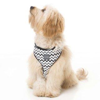 犬用首輪 ファッションハーネス(胴輪)OKOK 【FuzzYard】