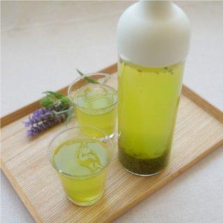 簡単水出し茶セット【緑扇】