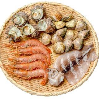お買い得 海鮮バーベキューセット【送料無料】 サザエ えび イカ 活ハマグリ 約2-3人前