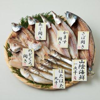 山陰海鮮一夜干しセット 1852-35-5【送料無料】0771