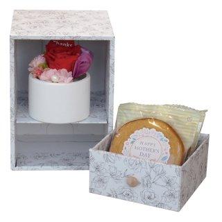 母の日 母の日BOX プリザ&バウムセット PB-01N【送料無料】0045