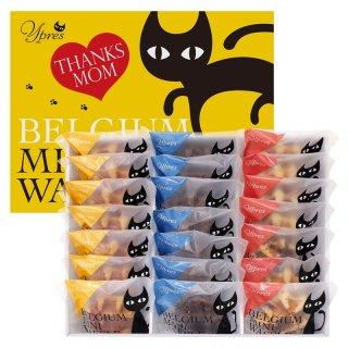 母の日 イーペルの猫祭り ベルギーミニワッフル M-YJ-BW【送料無料】0045