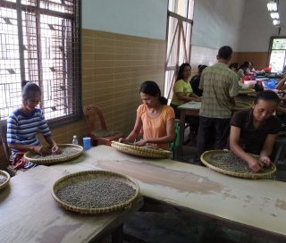 インドネシア マンデリン ガロンガン種 200g〈フレンチロースト/深煎り〉
