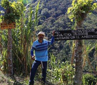 【NEW】コスタリカ チリポ地域 ロス・セドロス農地 200g〈シティロースト/中深煎り〉