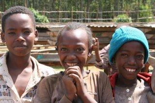 エチオピア イルガチェフェ地区 イディド村【ナチュラル精製/乾燥式】200g〈シティロースト/中深煎り〉