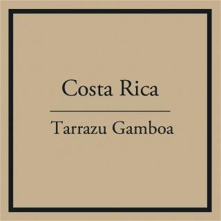 Costa Rica Tarrazu Gamboa  100g