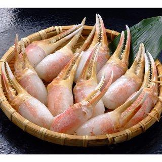 生ずわい蟹 爪肉