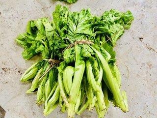 【 完売御礼 】天然農法 山形青菜