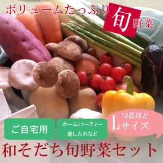 【ご自宅用】和そだち旬野菜セットLサイズ