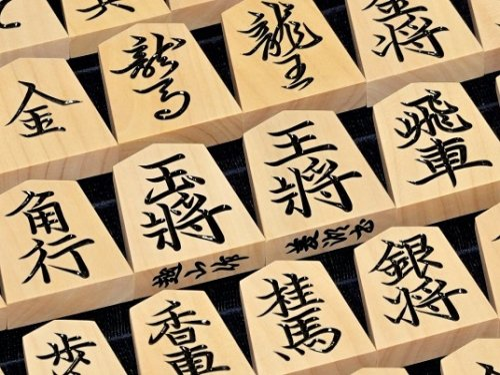 将棋駒 越山作 彫駒 薩摩ツゲ 菱湖   (送料無料)