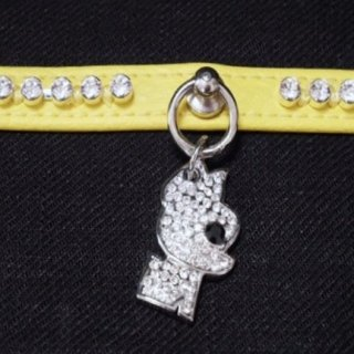 COL17 12 YELLOW COLLAR