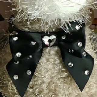 COLLAR LIA 39 HEART SWA COLLAR