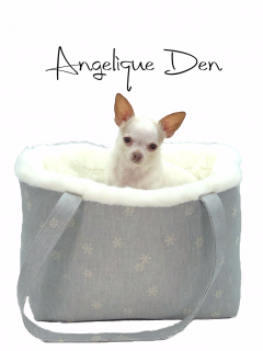 <img class='new_mark_img1' src='https://img.shop-pro.jp/img/new/icons11.gif' style='border:none;display:inline;margin:0px;padding:0px;width:auto;' />ANGELIQUE DENIM