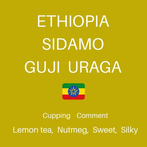 【100g】エチオピア シダモG-1 グジ ウォッシュド