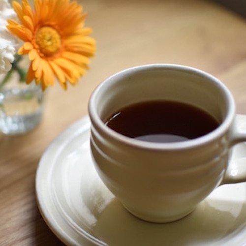 【ティーバッグ式コーヒー10個入】エチオピア シダモG-1 グジ ウォッシュド