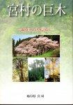 宮村の巨木−森の巨人たちを訪ねて