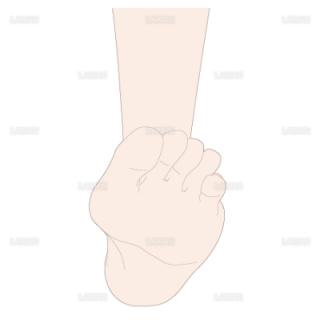 足の背屈 前面(Mサイズ)