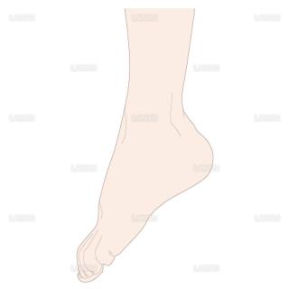 足の底屈 側面(Sサイズ)