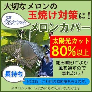 涼かちゃん メロンカバー(果実用 日焼け笠)