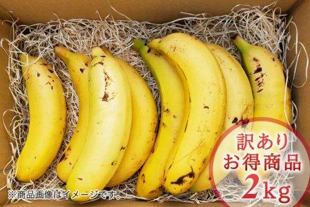 希少!国産バナナNEXT716【訳あり2kg】
