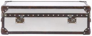 WATSON MIDIUM TRUNK BRUSHED STEEL
