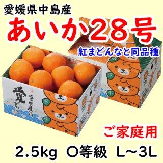 「樹になるゼリー」あいか28号 普通箱 2.5〜5kg L〜3Lサイズ  ◆予約商品◆