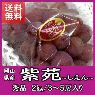 ◆送料無料◆岡山の冬葡萄「紫苑(しえん)」  赤秀 2�/3〜5房(房数指定不可)